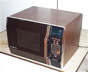 Little Litton Microwave Oven